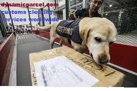 Customs Send Courier from India
